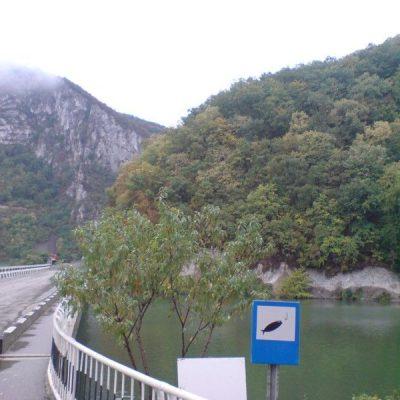 Pădurea de la Porţile de Fier, pe Dunăre