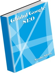3D-Ghidul_Google_SEO