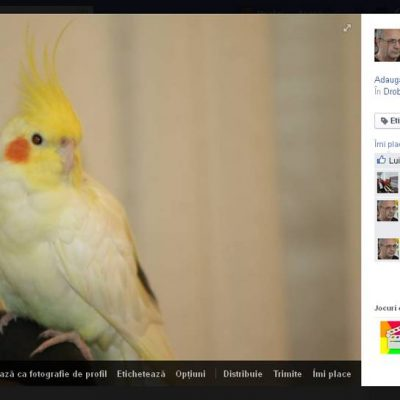 Facebook-Fotografie.jpg