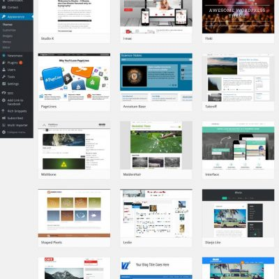 Teme WordPress