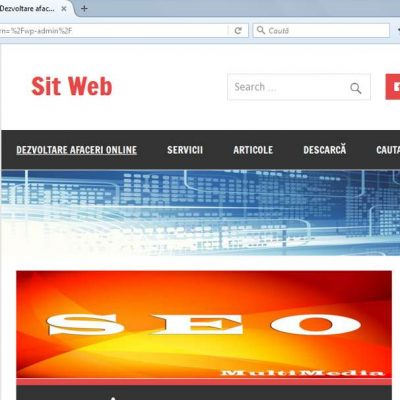 Wordpress-Tema-Personalizare.jpg