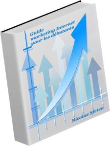 Guide marketing Internet pour les débutants