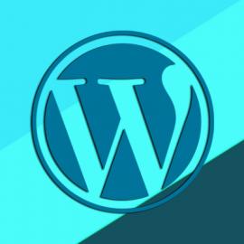 Wordpress-Dezvoltatori