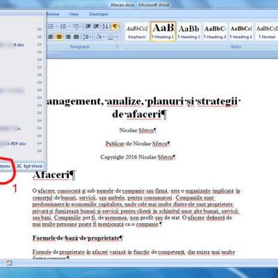 Word2007Comenzi1.jpg