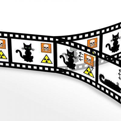 """Teorema """"pisicii lui Schrödinger"""" în mecanica cuantică"""