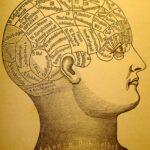 O cartografiere frenologică a creierului
