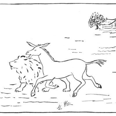 La mule et le lion