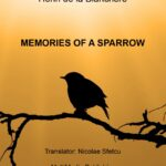 Memories of a Sparrow