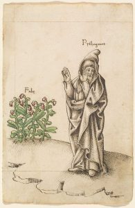 Pitagora și boabele