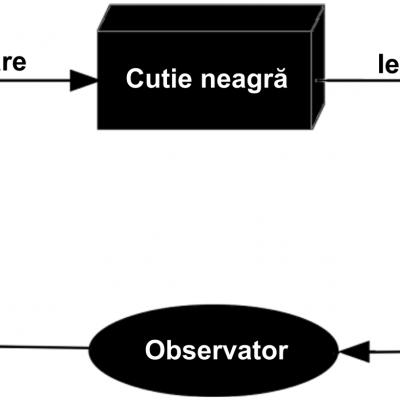 Modelul de cutie neagră
