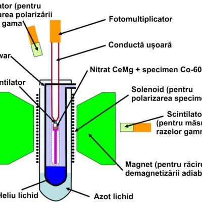 Ilustrația schematică a experimentului Wu