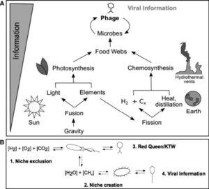 De la gravitație la informații virale