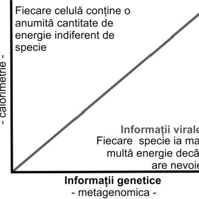 Căutarea informațiilor virale