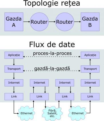 Topologie de rețea.