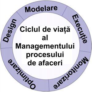 Ciclul de viata al Managementului procesului de afaceri