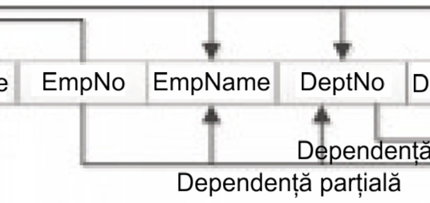Baze de date - Diagrama dependenței