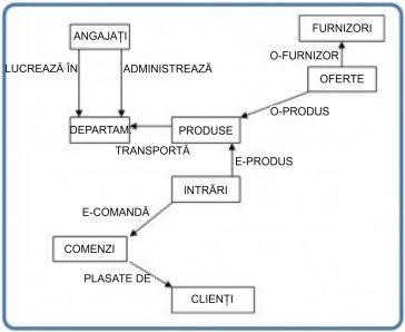 Statistica - Diagrama modelului de rețea.