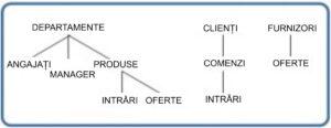 Statistica - Diagrama modelului ierarhic