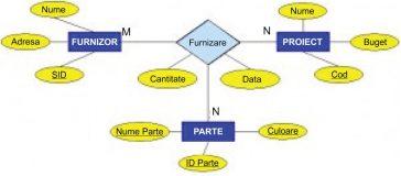 Relații (asocieri) în modelul de date entitate-asociere