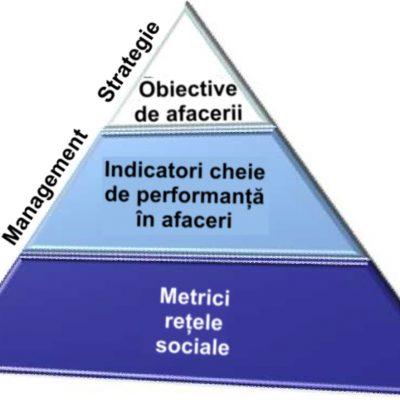 Componente de Business Intelligence într-un program de analitica rețelelor sociale
