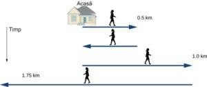 Cronologia mișcărilor