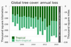 Rata pierderii acoperirii globale cu pomi s-a dublat aproximativ din 2001, până la o pierdere anuală care se apropie de o zonă de mărimea Italiei.